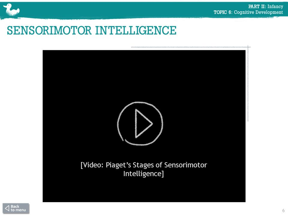 [Video: Piaget's Stages of Sensorimotor Intelligence]